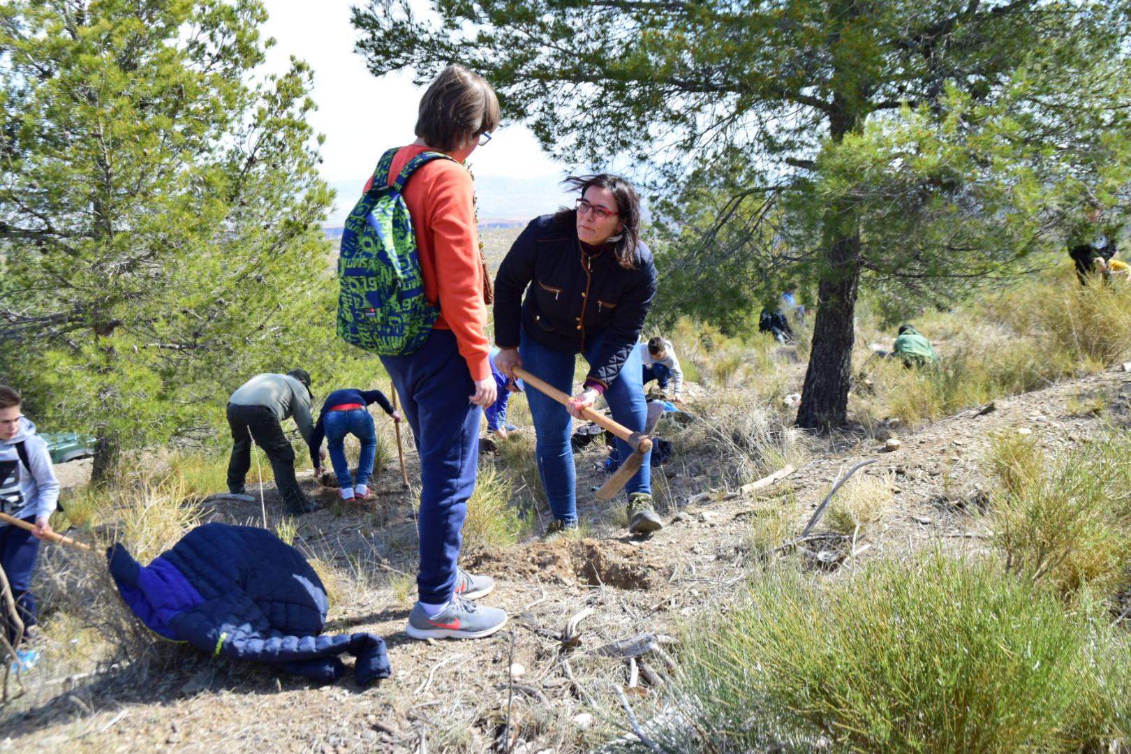 Estudiantes se suman a la reforestación de la Sierra de Baza