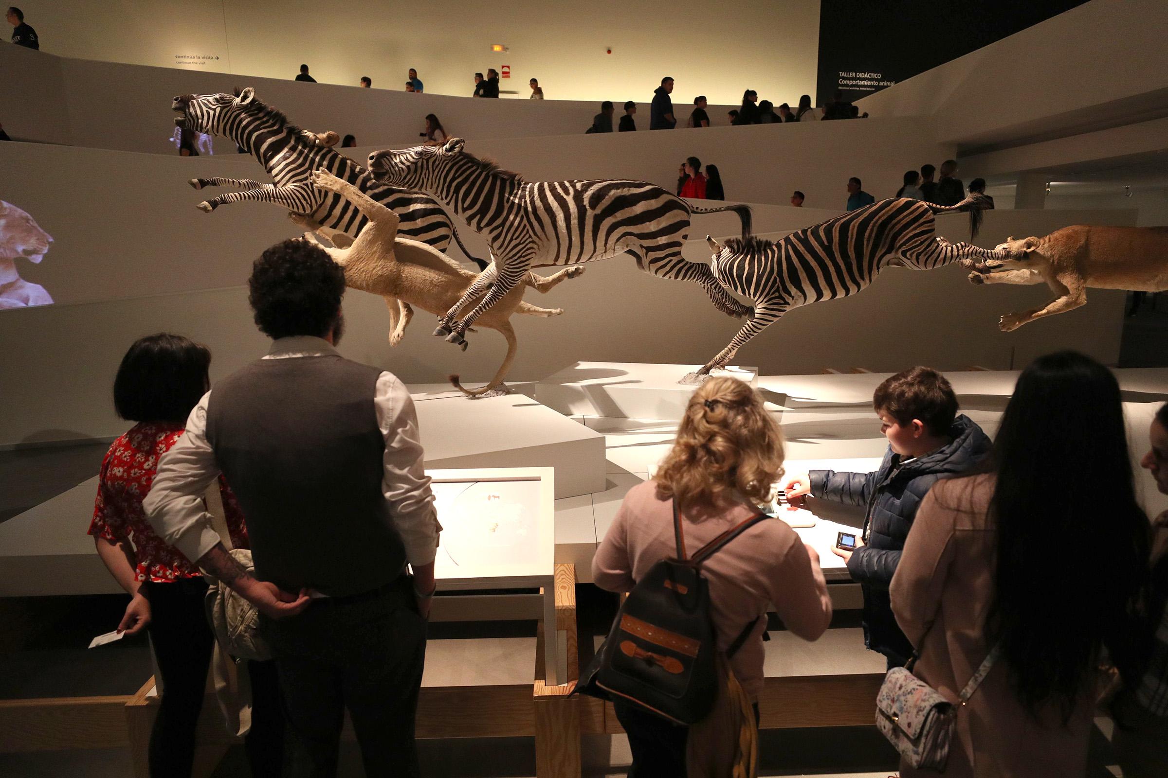 El Parque de las Ciencias y el BioDomo se mantienen abiertos en Semana Santa