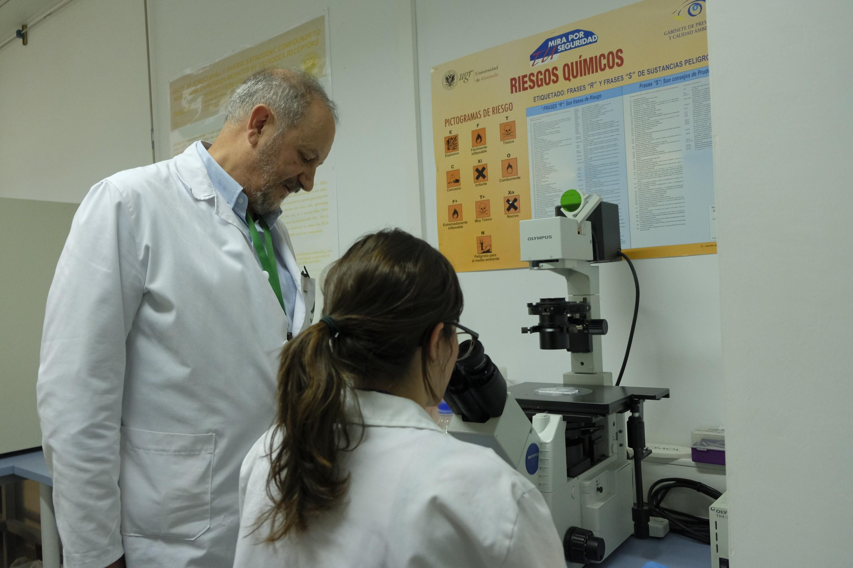 La Junta aprueba la creación de dos nuevos institutos de investigación en la UGR