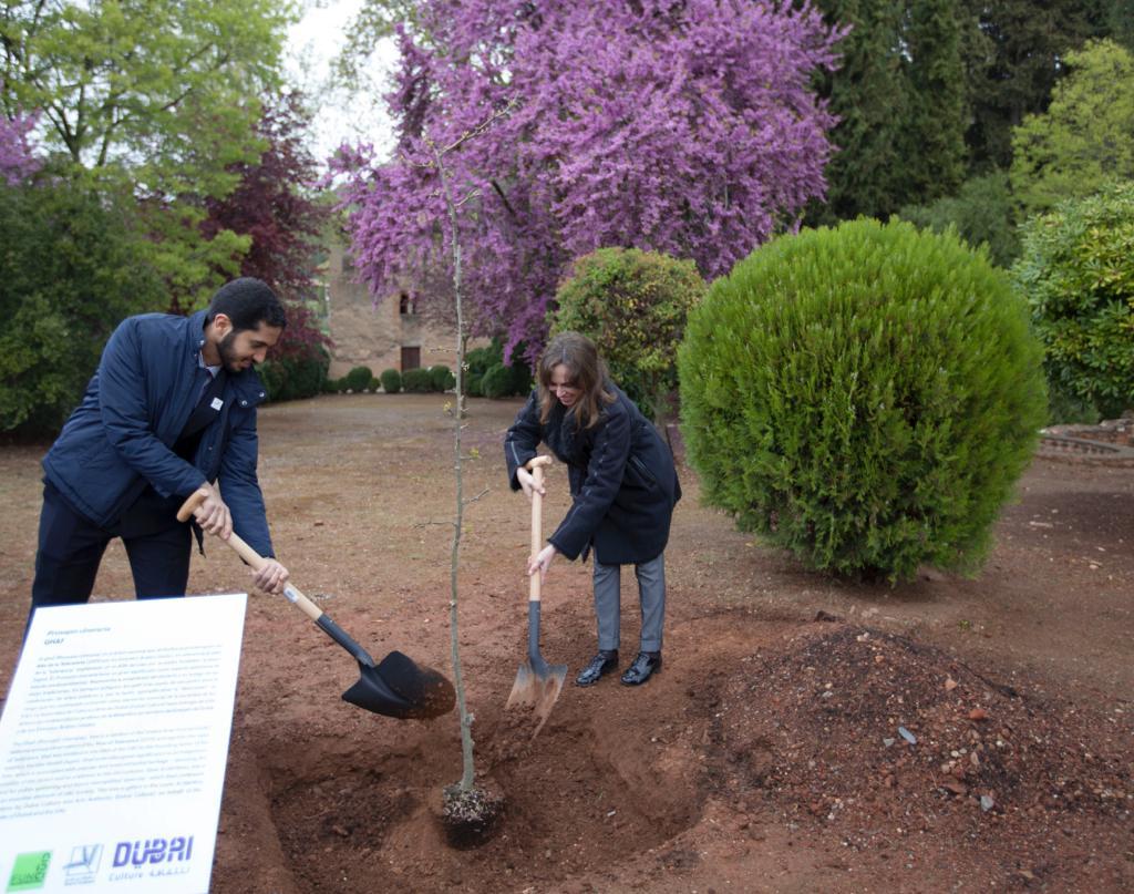 Plantan un árbol autóctono de Dubái en los jardines de la Alhambra con motivo del Año de la Tolerancia en los Emiratos Árabes Unidos