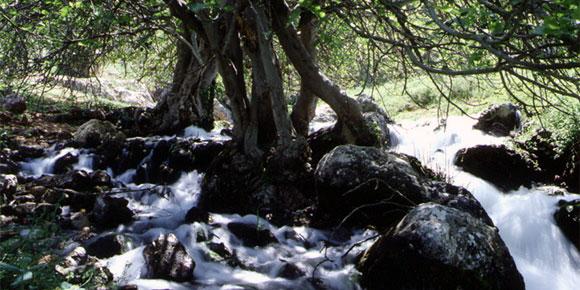 La Junta declara el Nacimiento de Riofrío monumento natural de Andalucía
