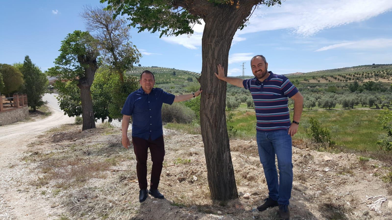 Cúllar Vega dona 30 ejemplares de arce a Ventas de Huelma