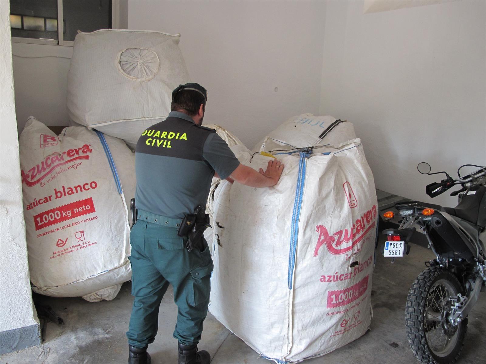 Cinco denunciados tras las intervención de más de 500 kilos de mejorana recolectados irregularmente