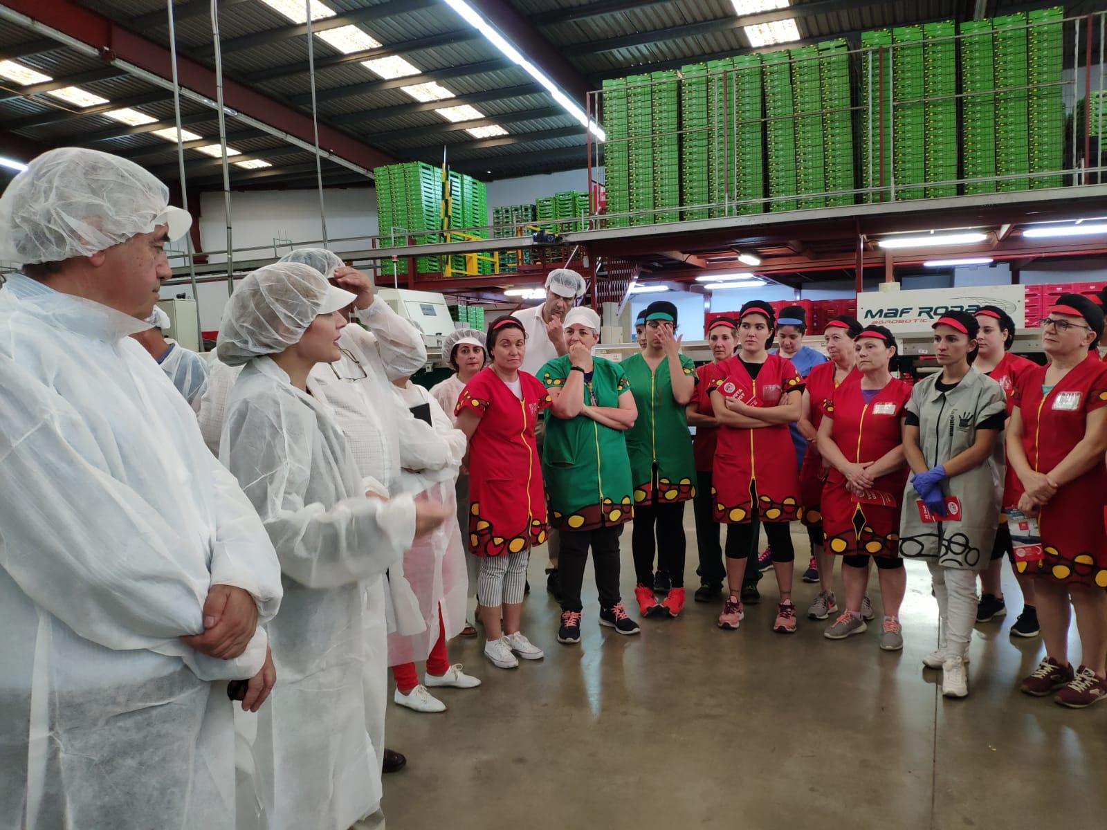 UGT destaca la importancia del sector hortofrutícola en la economía granadina