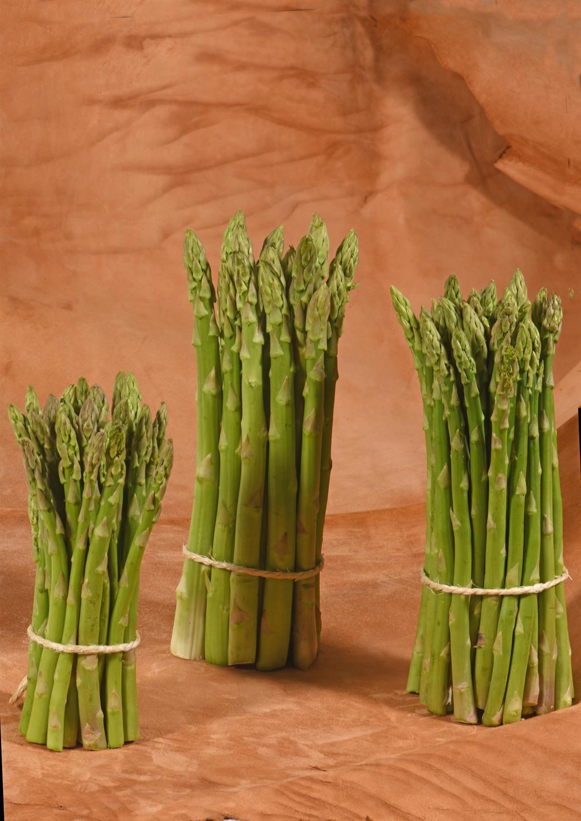 UPA anuncia la «suspensión» de la producción de espárrago verde por ausencia de pedidos