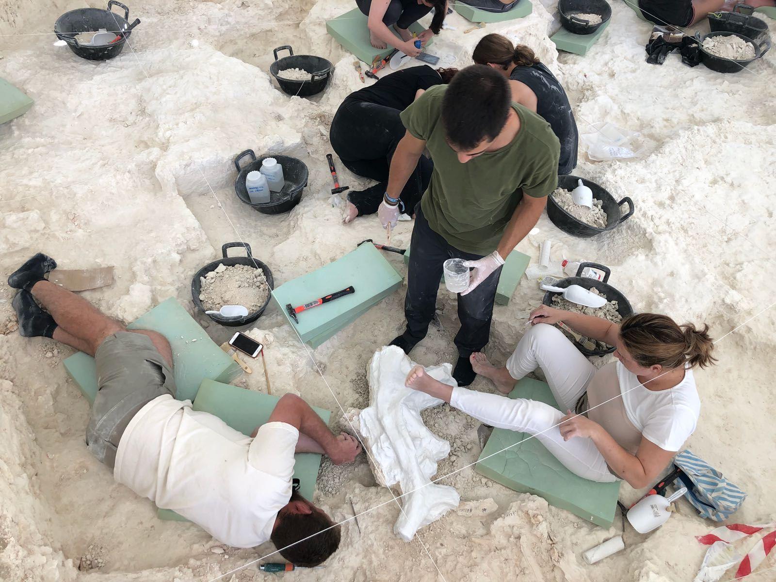 Los trabajos arqueológicos de Orce muestra la importante cantidad de elementos líticos existentes en el subsuelo