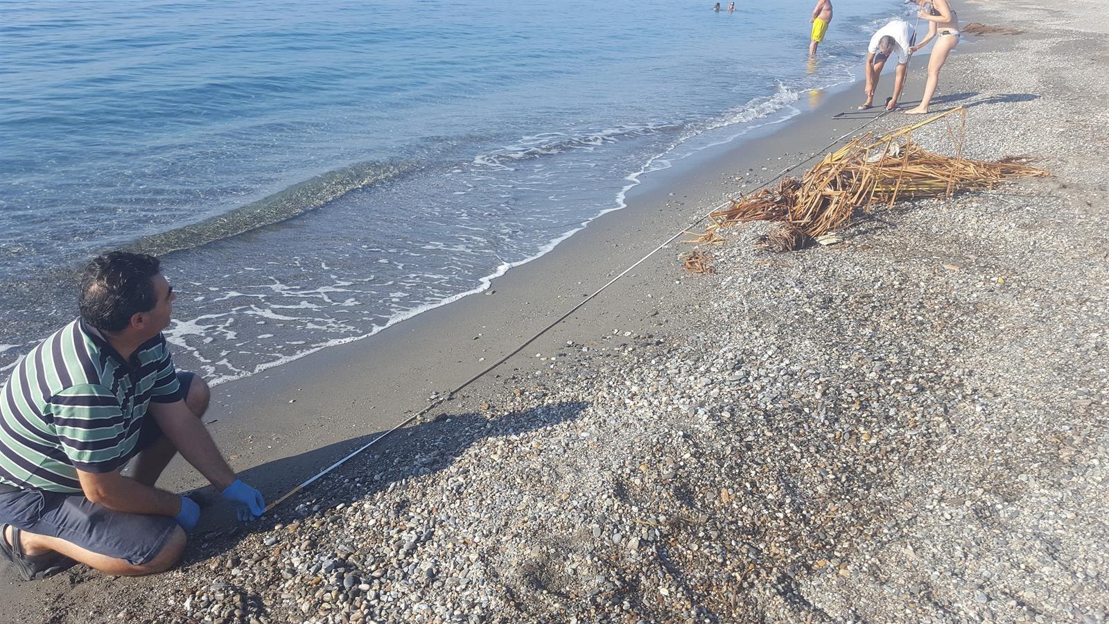 Investigadores de la Universidad de Granada analizan la presencia de microplásticos en las playas de la Costa Tropical