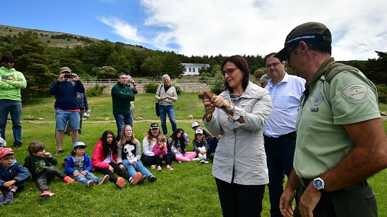 Liberan un cernícalo en Sierra Nevada coincidiendo con el Día Mundial del Medio Ambiente