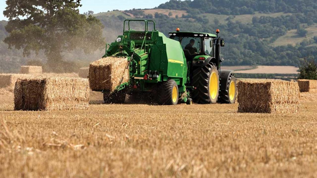 UPA advierte el perjuicio que la falta de lluvia está ocasionando en el cereal de secano