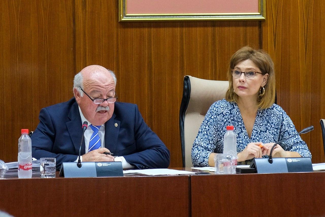 Mar Sánchez, designada presidenta de la comisión de Salud y Familias del Parlamento de Andalucía