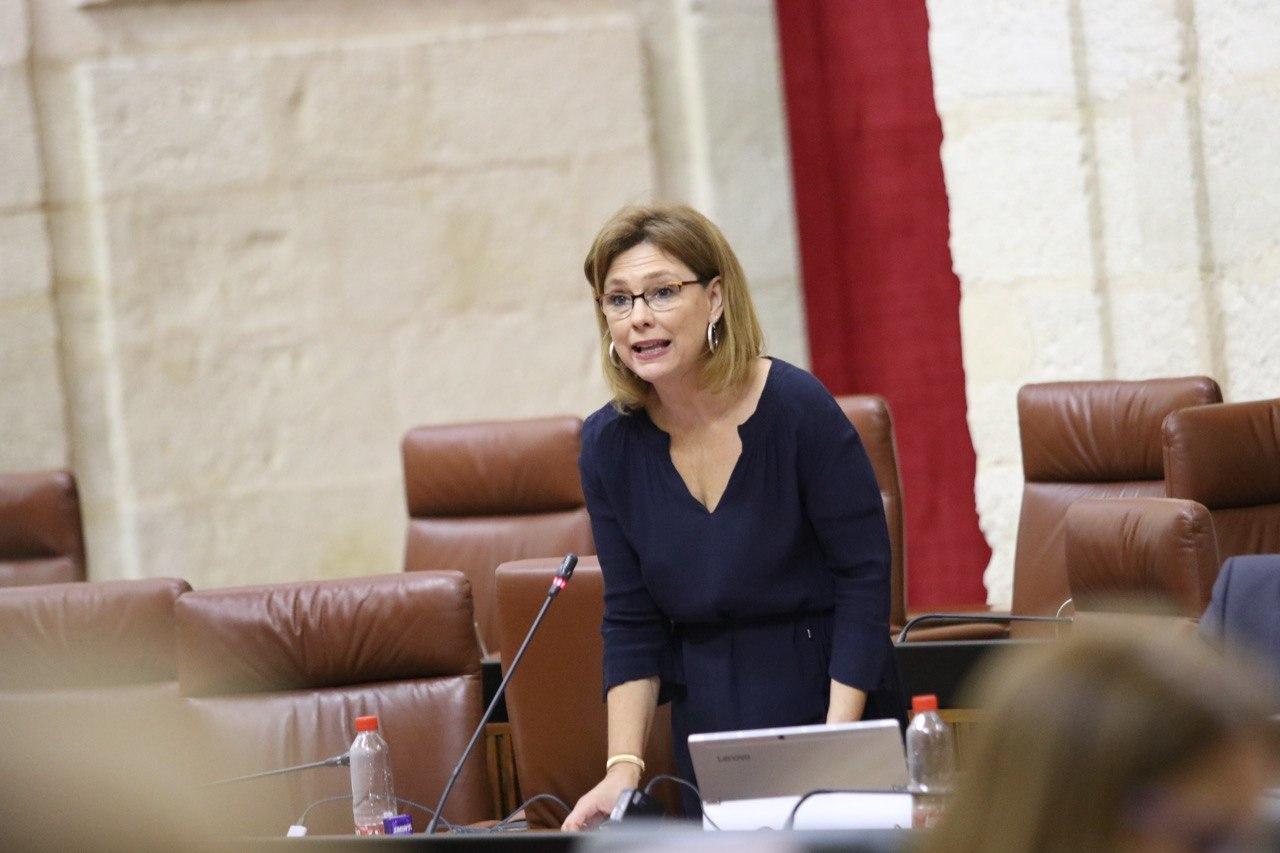 Ciudadanos pide celeridad en los trabajos en la A-402 a su paso por la comarca de Alhama