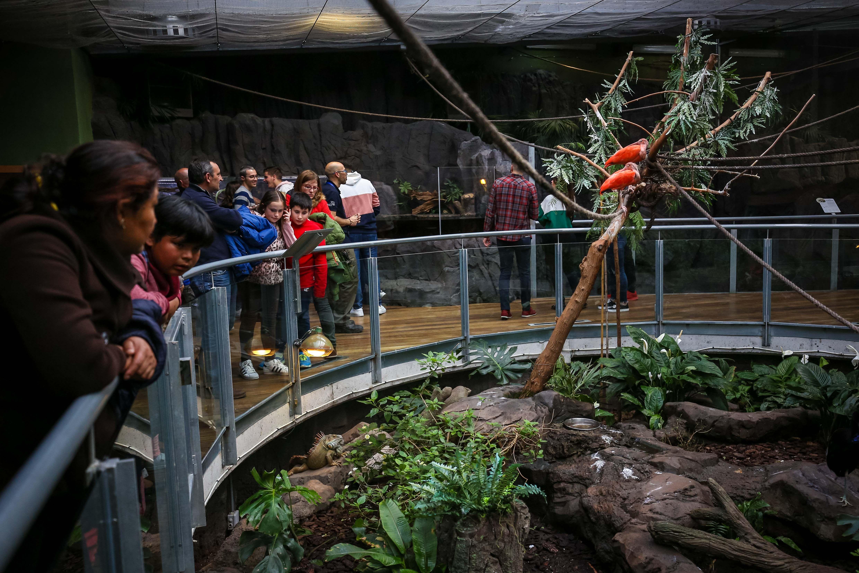 El BioDomo cumple tres años con nuevas especies y más de medio millón de visitas acumuladas