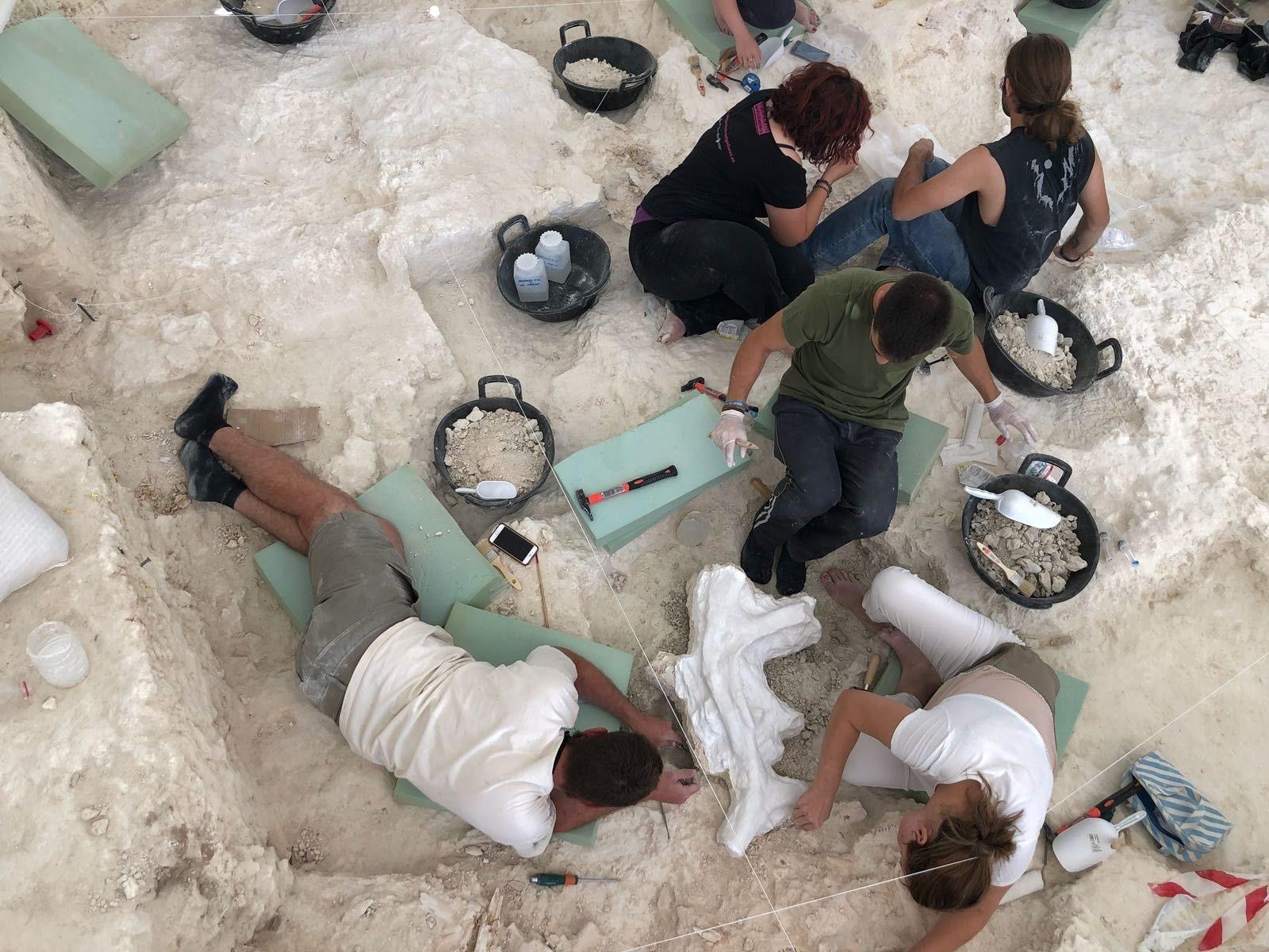 Comienza la fase pendiente de la campaña de excavaciones de Orce