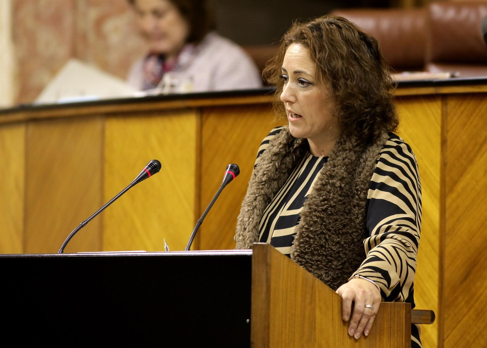 IU exige a la Subdelegación que prohíba la manifestación carlista del 18 de julio en Granada