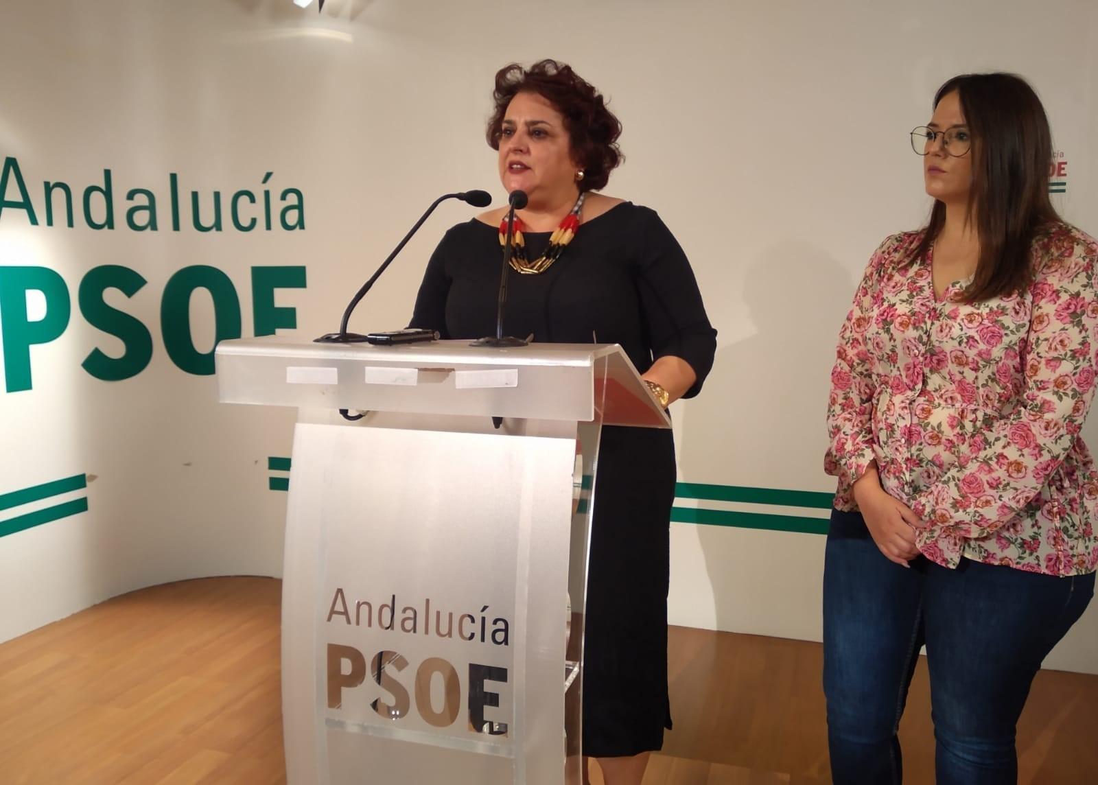 El PSOE denuncia la «pérdida» de 60 unidades en centros educativos de la provincia