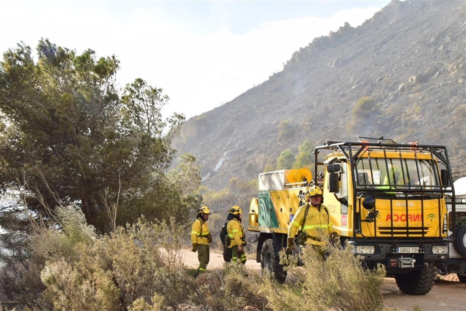 Extinguido el incendio de Cañar, que ha afectado a 2.000 metros cuadrados de pino y matorral
