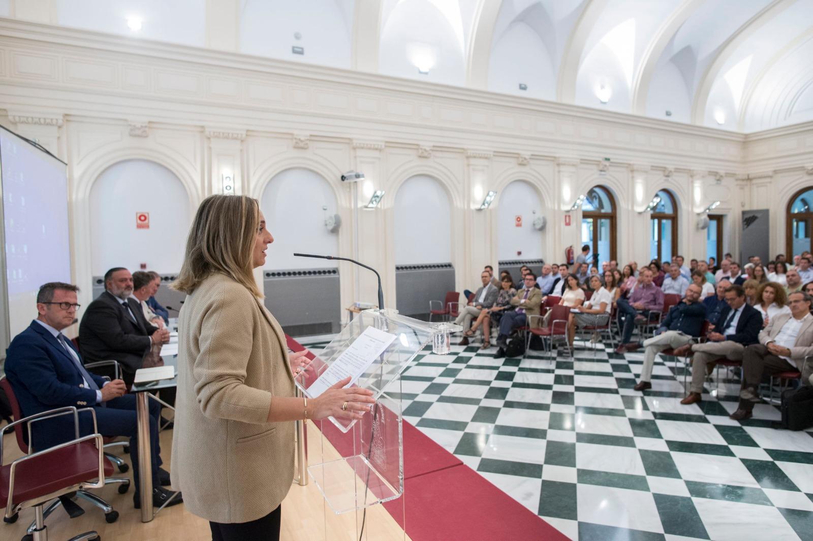 La Junta cifra en unas 25.000 las viviendas irregulares en la provincia de Granada