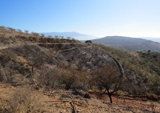 El presunto autor del incendio forestal en Turón realizaba trabajos de fontanería
