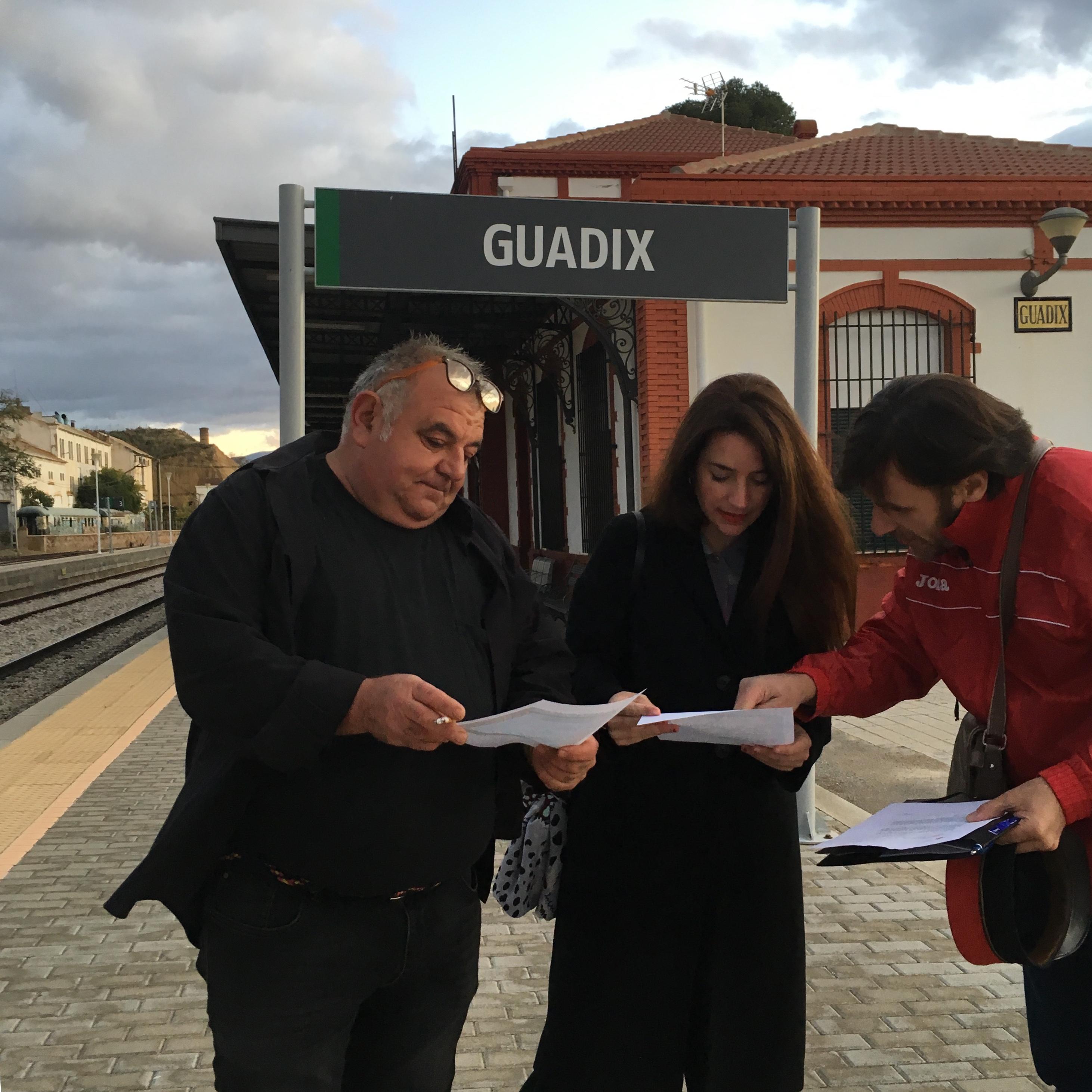 #10N: Más País garantiza la reapertura del tren Guadix-Baza-Lorca en cuatro años