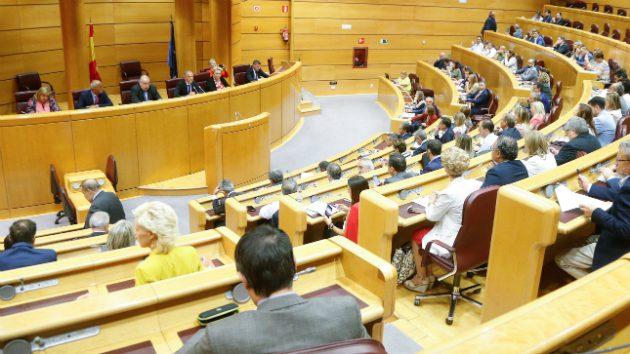 Primera reunión de la legislatura de la dirección del PSOE en el Senado para abordar los problemas de la despoblación