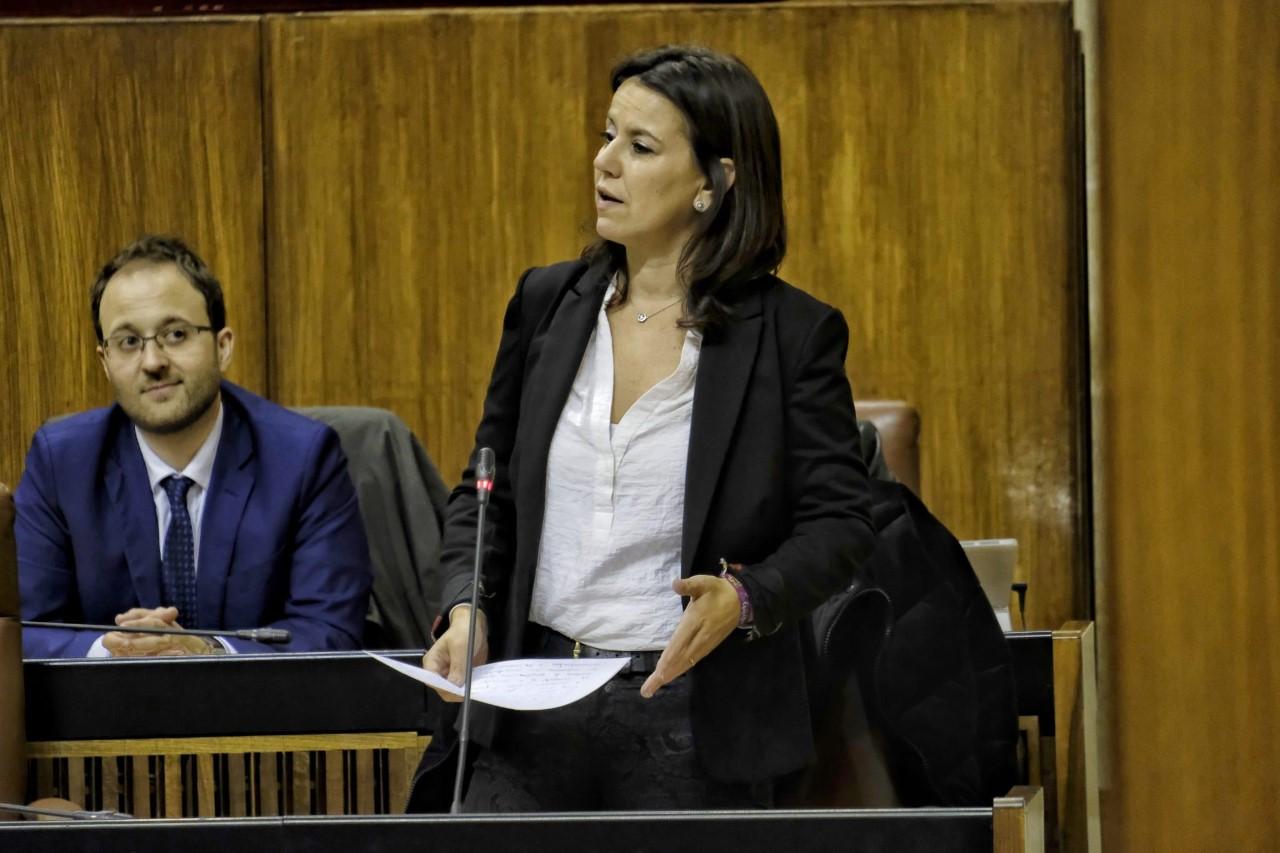 El PP reprocha a Entrena por dejar de ejecutar cuatro talleres de empleo aprobados por la Junta