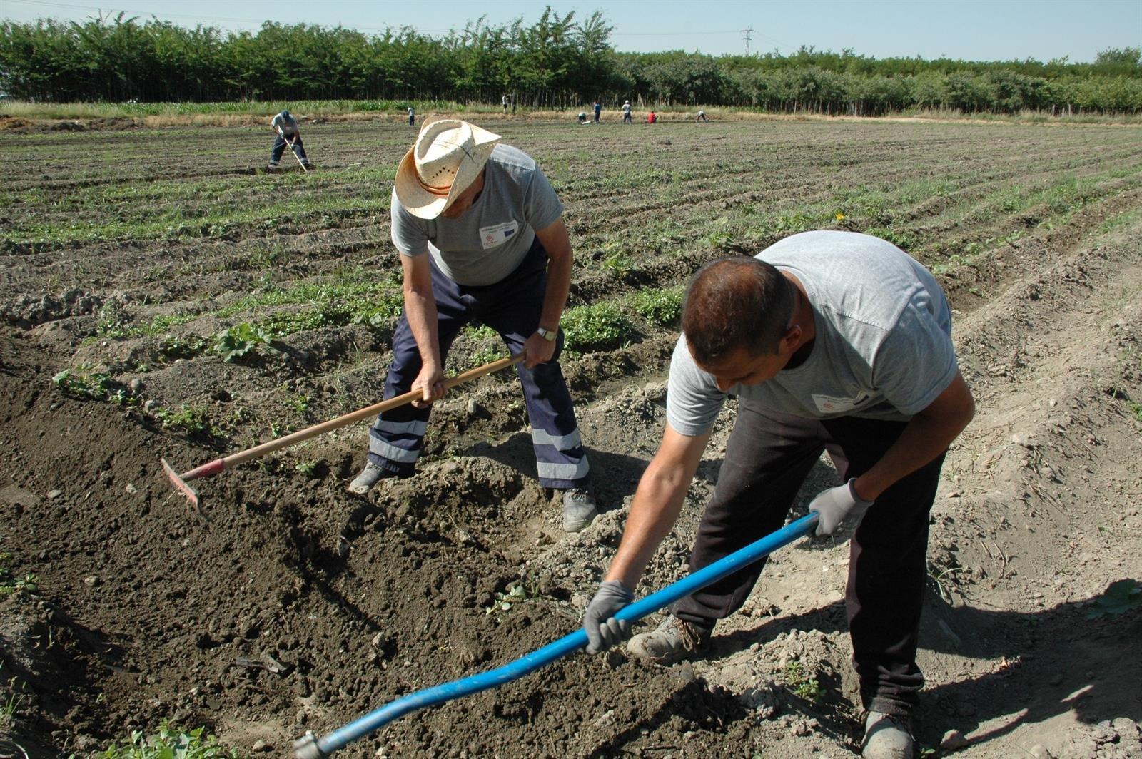La Mesa por el Clima de Granada y Salvemos la Vega piden proteger los suelos fértiles