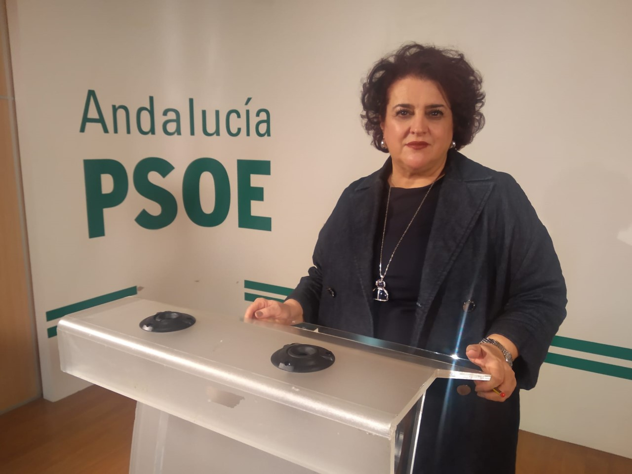 El PSOE contra la gestión del Parque de las Ciencias desde Sevilla