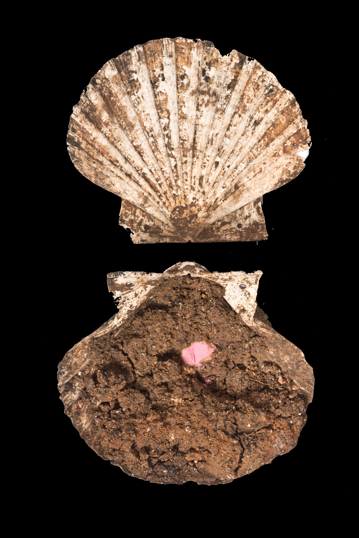 Arqueólogos analizan la composición de un estuche de maquillaje de época romana
