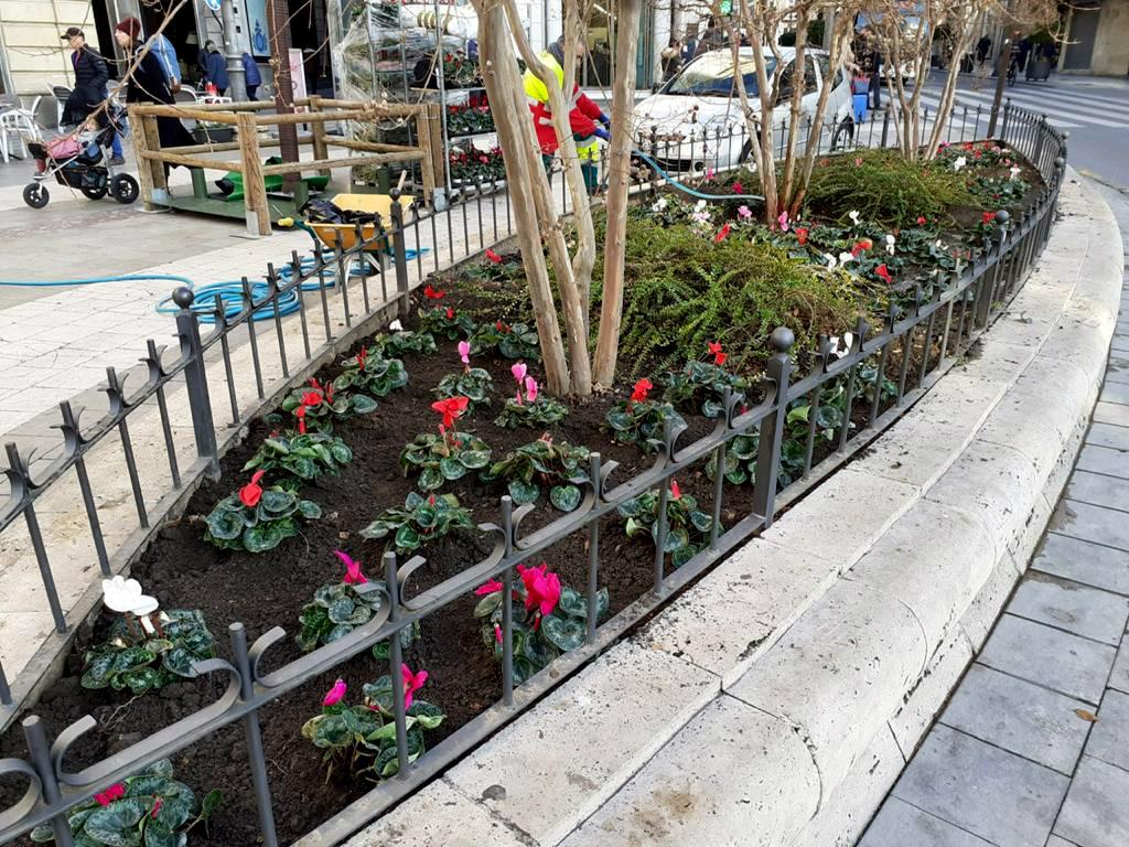 El Ayuntamiento repone las flores de temporada