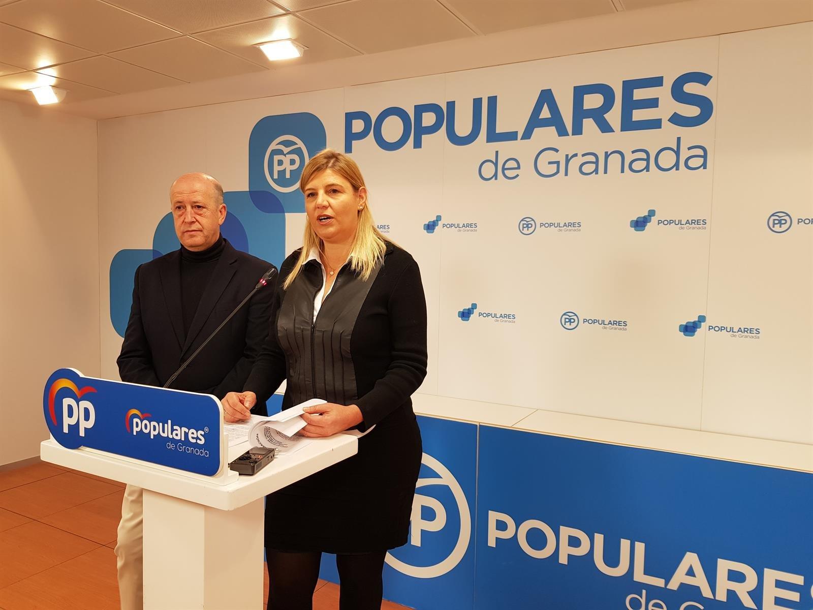 """El PP reprocha a la subdelegada del Gobierno """"su lamentable utilización de un tema tan doloroso y serio como la violencia de género para hacer política"""""""