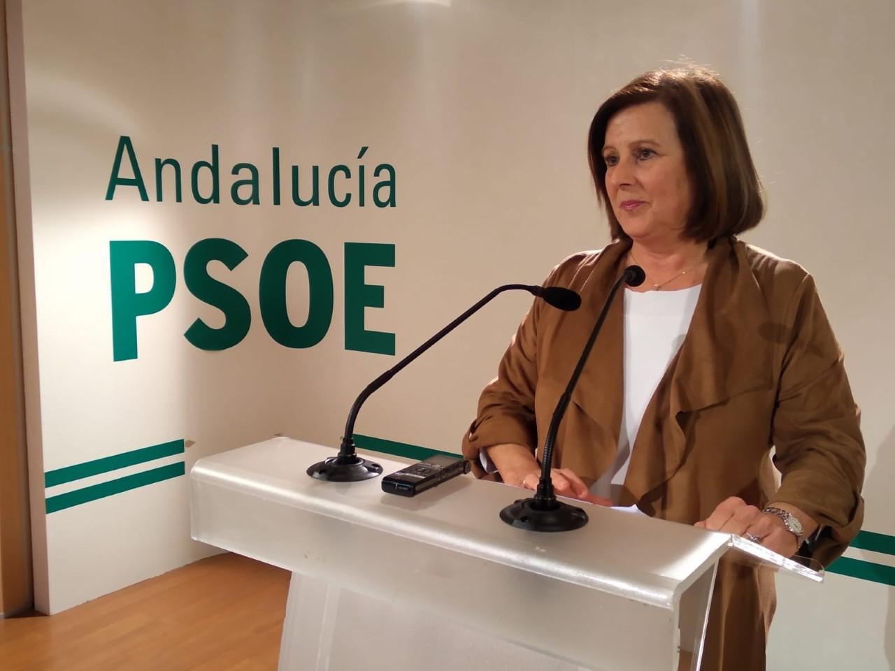 """El PSOE insta a la Junta a mantener la Renta mínima para la población """"más vulnerable"""" de la provincia, un """"derecho compatible"""" con el IMV"""