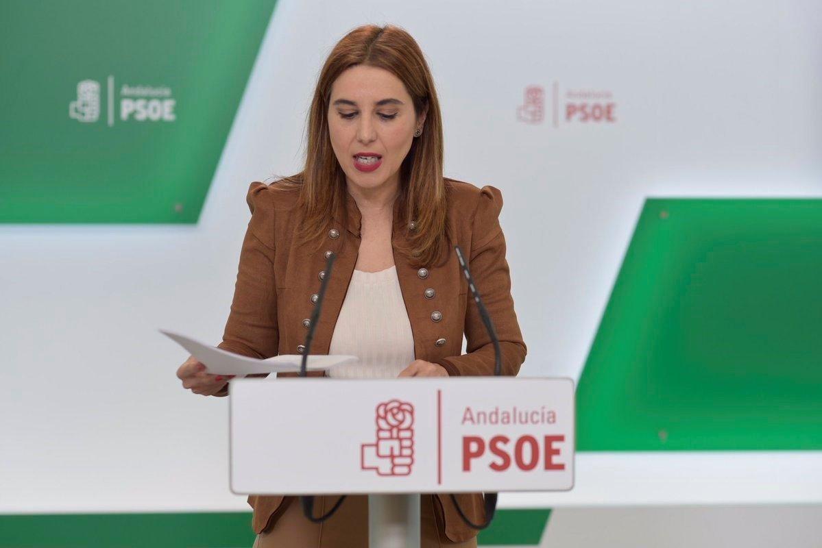 PSOE-A exige a la Junta que acabe «con los disparates» en educación y los «desbarajustes» en Granada