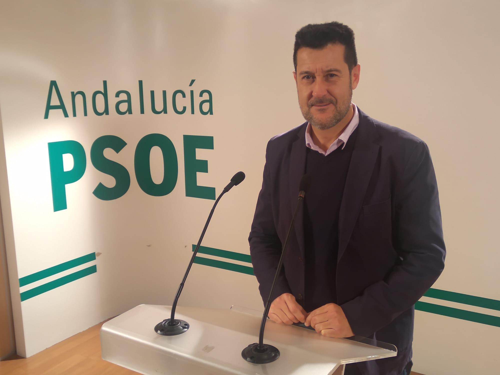 """El PSOE considera la creación del consorcio del IFMIF-Dones un """"paso indispensable"""" en el proyecto del acelerador"""