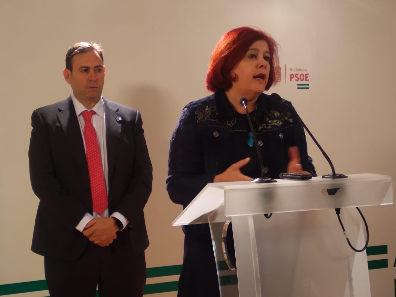El PSOE destaca que más de 73.560 asalariados y 38.624 autónomos se benefician de las medidas antiCovid del Gobierno