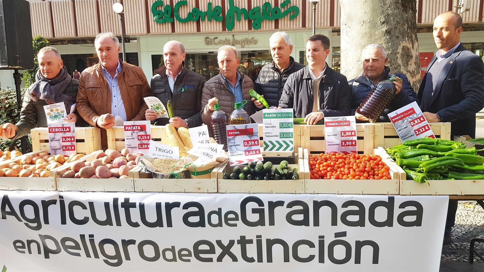 El sector agrario llama a la «participación masiva» en gran tractorada y a la manifestación del 19 de febrero