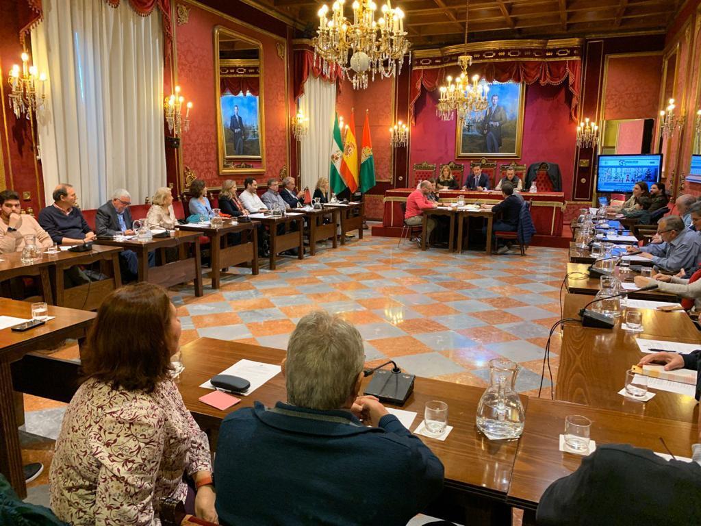 El Ayuntamiento constituye el Consejo Municipal de Representación Vecinal
