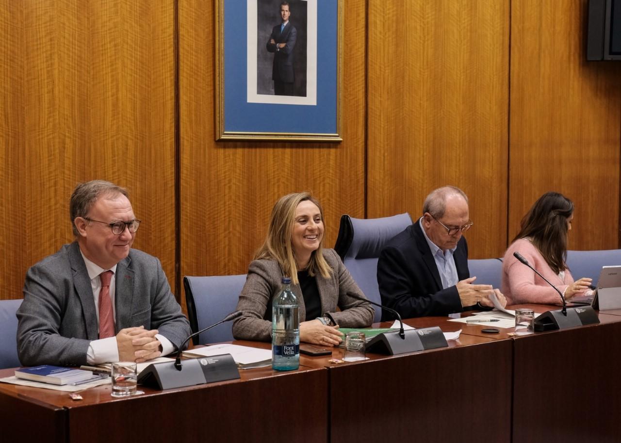 La remodelación del primer tramo del eje Arabial-Palencia se adjudicará en marzo, según la Junta