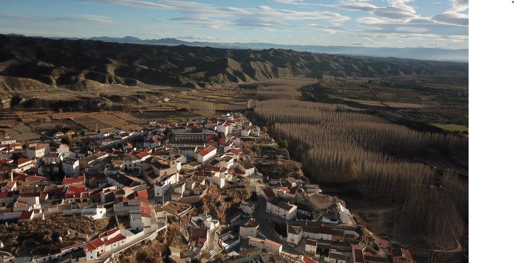 El Altiplano se opone a la ampliación de macrogranjas de cerdos y exige mejoras en gestión de purines y olores