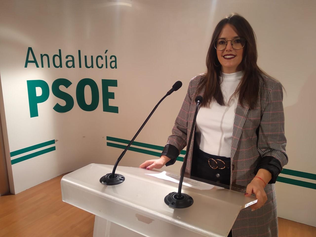 """El PSOE reclama al consejero Imbroda """"celeridad"""" para reestablecer el servicio de matriculación virtual"""