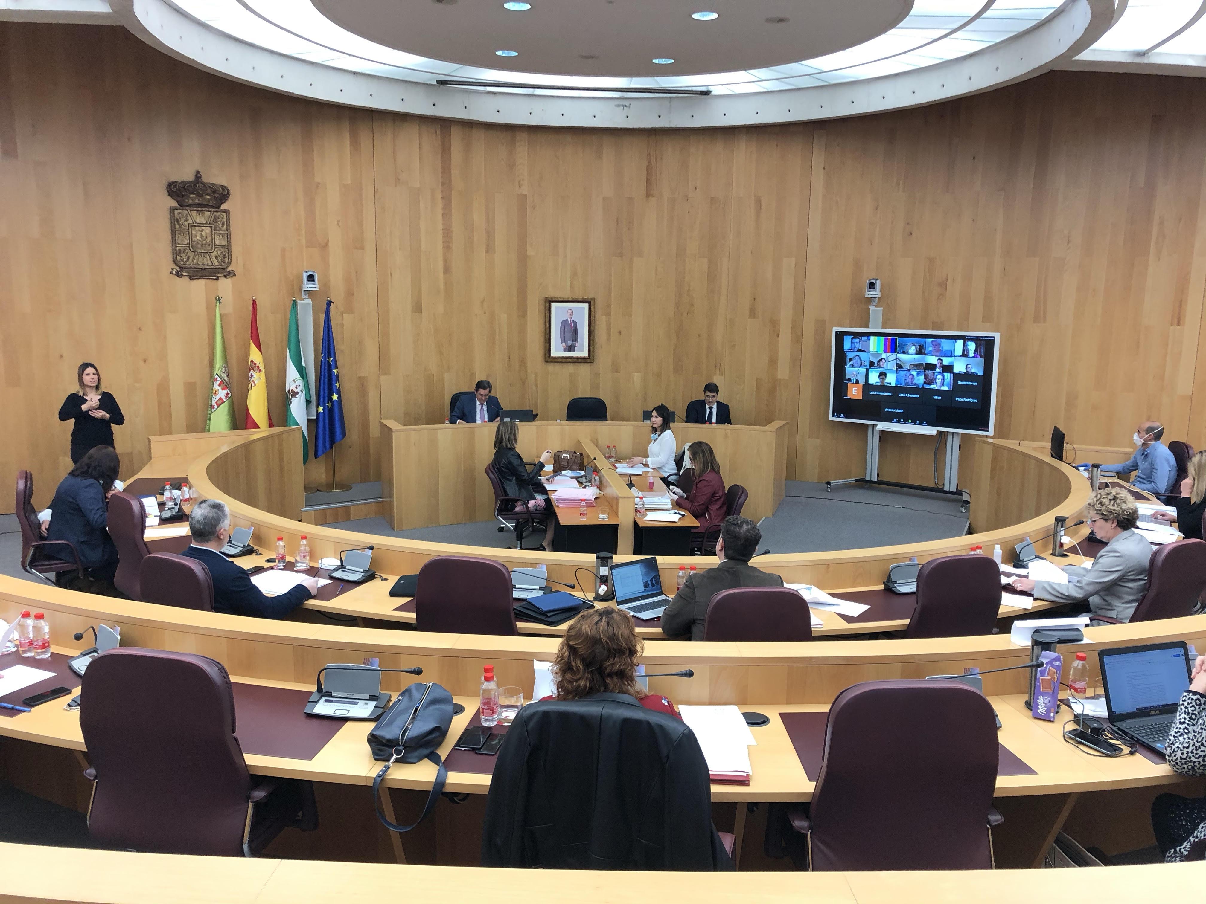 El pleno de Diputación rinde homenaje a los fallecidos en la provincia por Covid-19