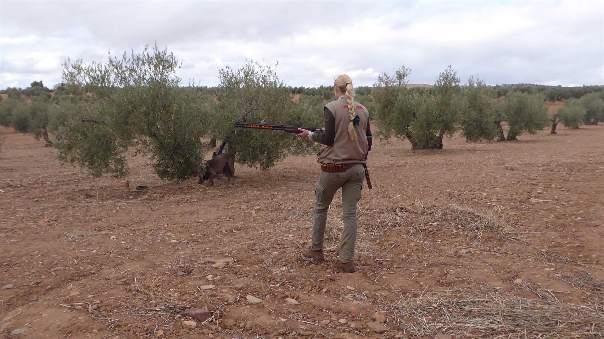 Piden autorizar la caza de jabalíes y ciervos ante los daños provocados en el campo