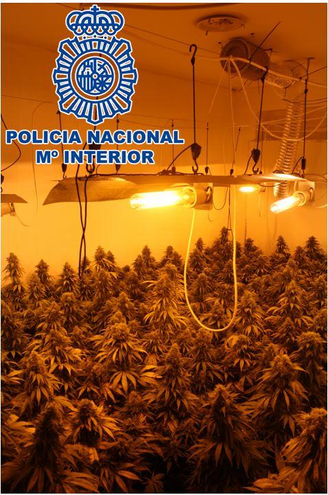 Nueva operación policial contra el tráfico de marihuana en el «Hotel Luz» de Zona Norte