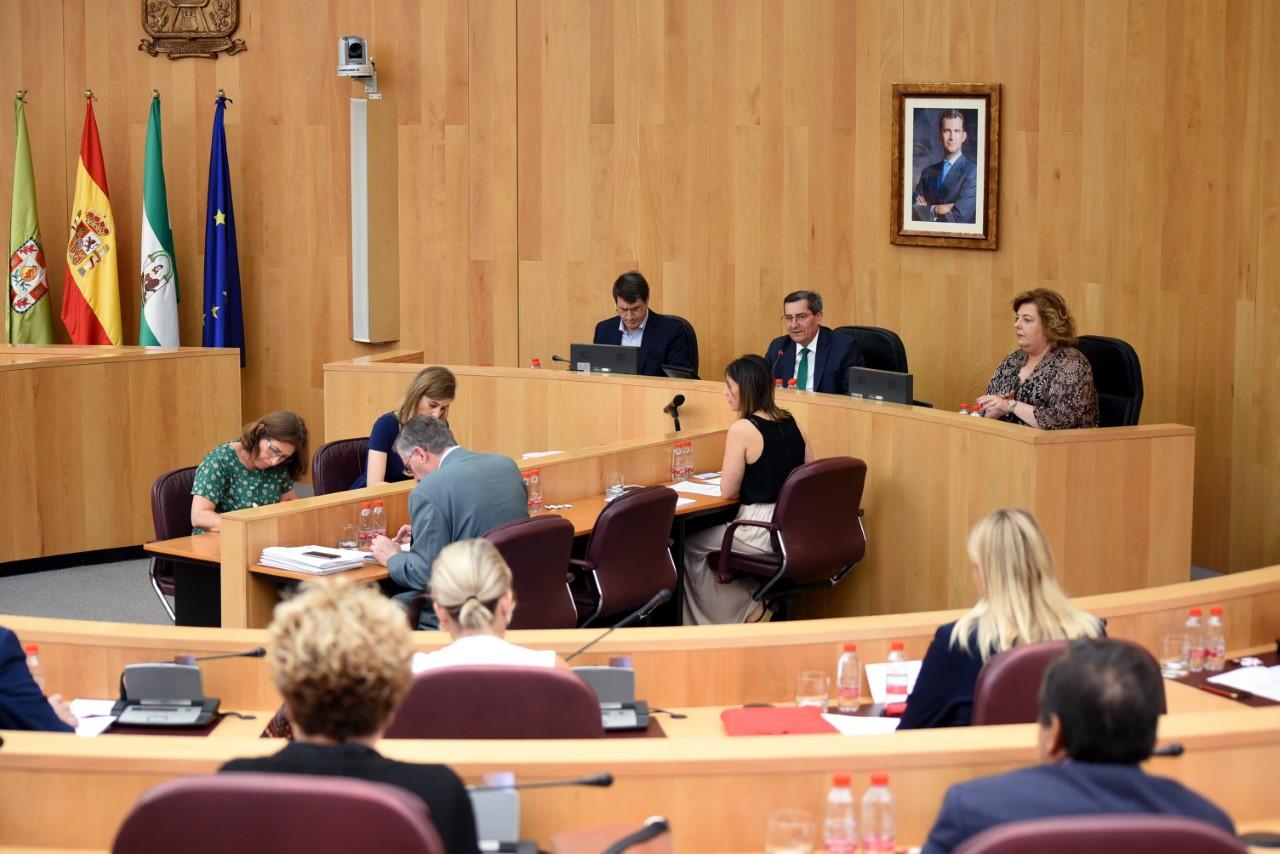 La Diputación celebrará este jueves su primer pleno semipresencial, que arrancará con tres minutos de silencio por los fallecidos por el Covid-19