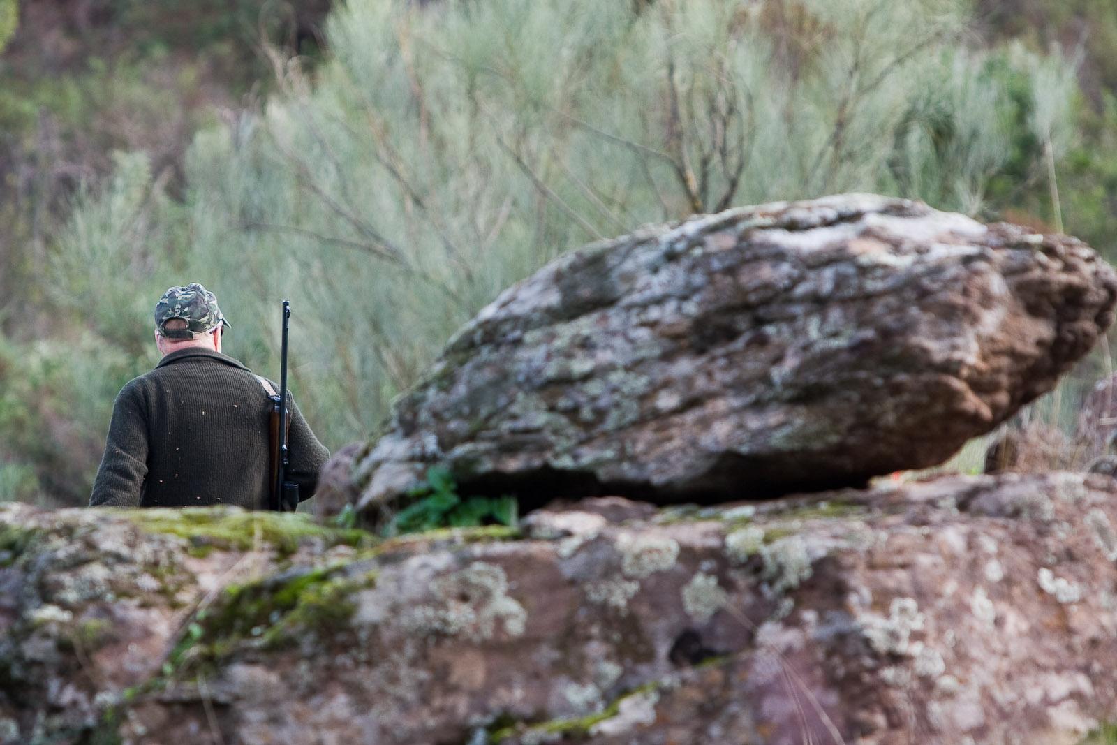 Andalucía abre la oferta pública de caza para los permisos en terrenos de titularidad pública de la Junta