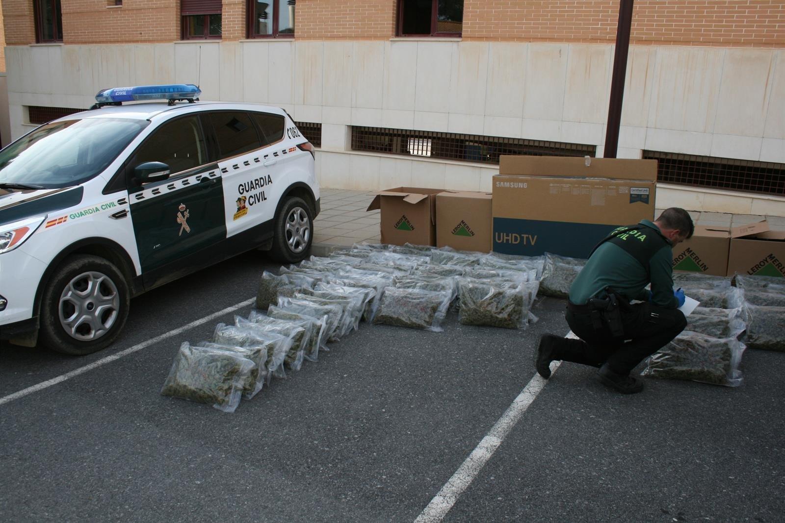Retiradas más de 4.400 plantas y 132 kilos de marihuana en los primeros 15 días de mayo
