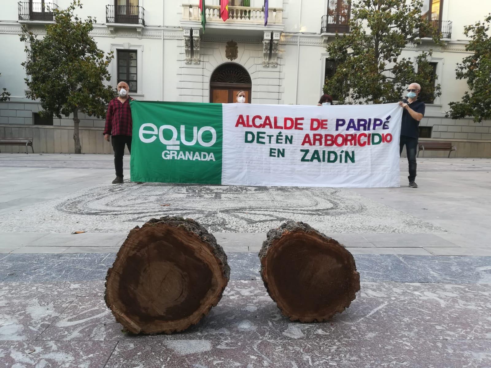 EQUO protesta ante el Ayuntamiento por la tala masiva de árboles en la calle Palencia