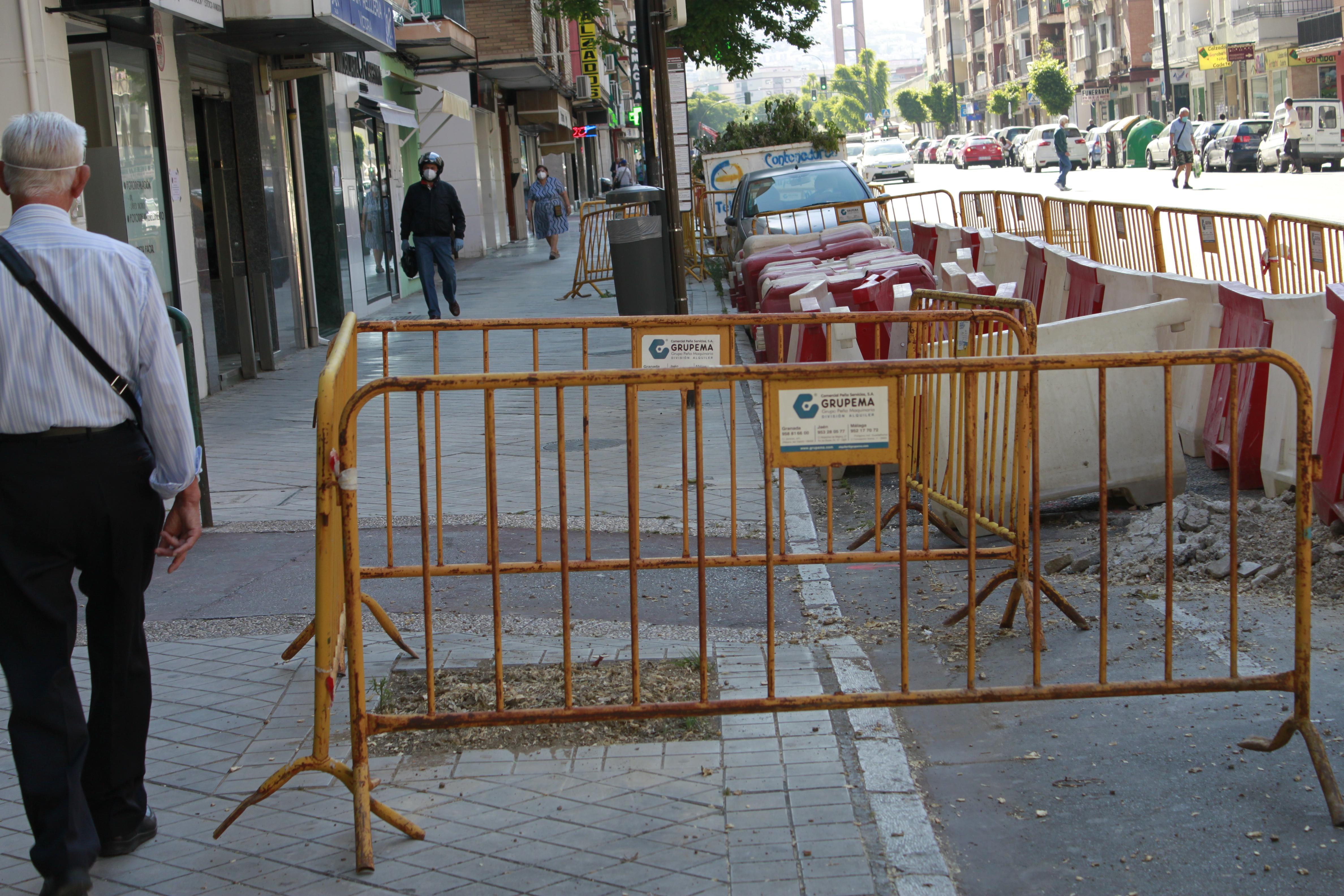 """Diversos colectivos piden al alcalde la """"paralización inmediata"""" de la tala de árboles"""