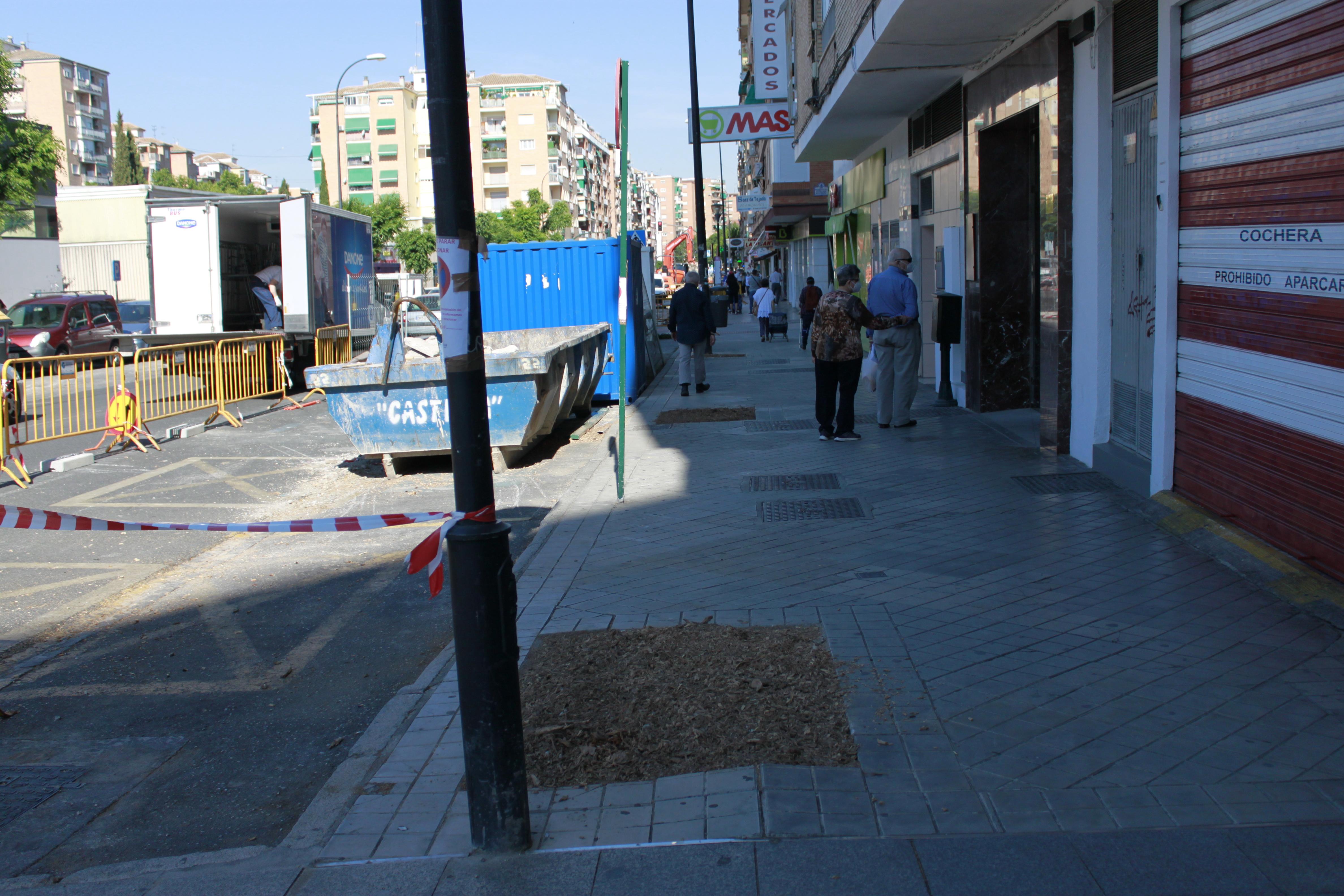 El PSOE exige la paralización de la tala de 300 árboles en la calle Palencia