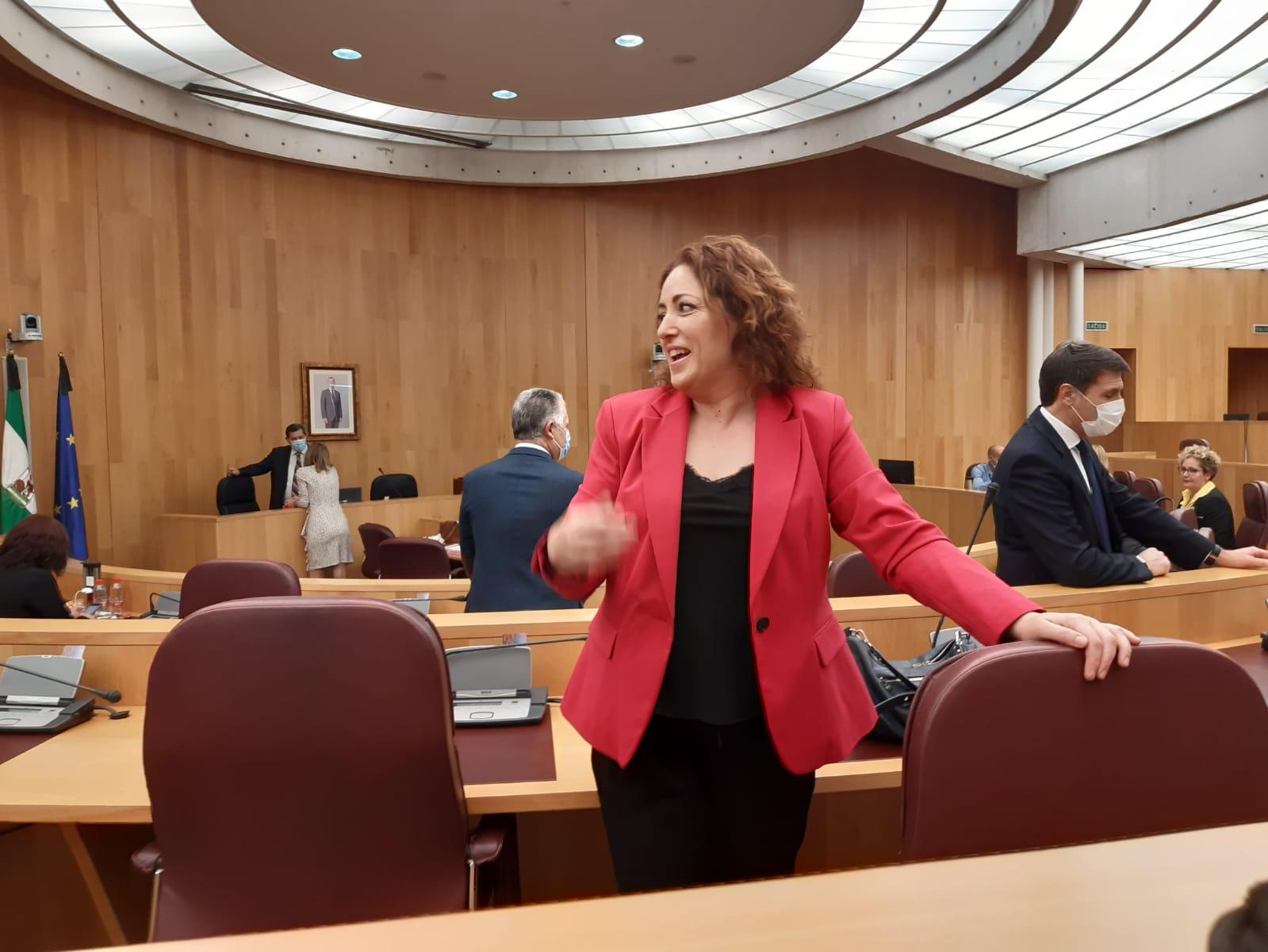 IU consigue el apoyo de Diputación para establecer un plan contra la contaminación en Granada
