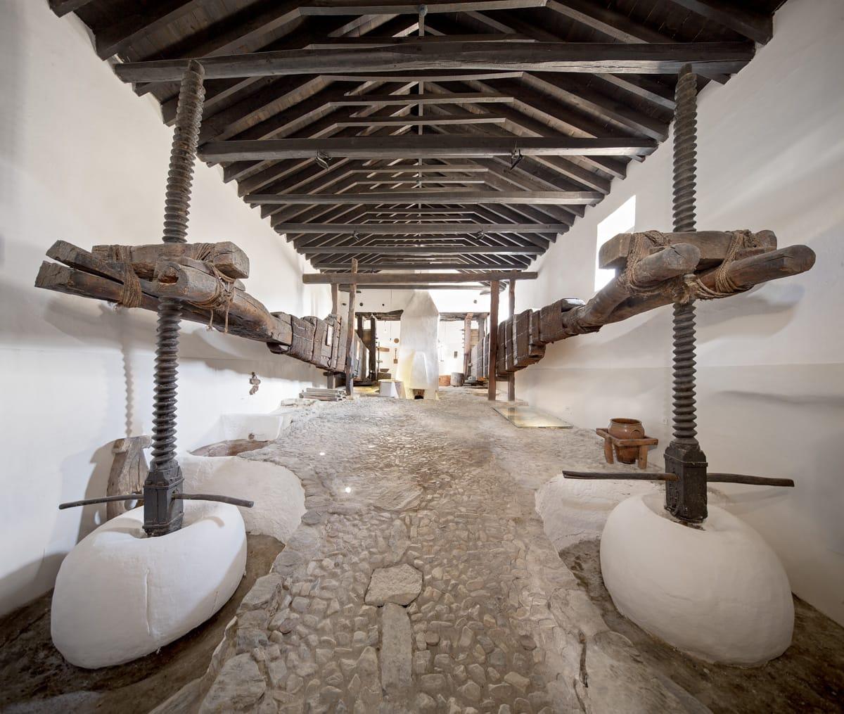 Almazara La Erilla retoma las visitas guiadas y las catas de aceite